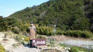 オリーヴ栽培事業、協力農家の「里山おりーぶ園」と経営者新崎球雄氏