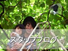 淡路島オリーブ園スタッフブログ